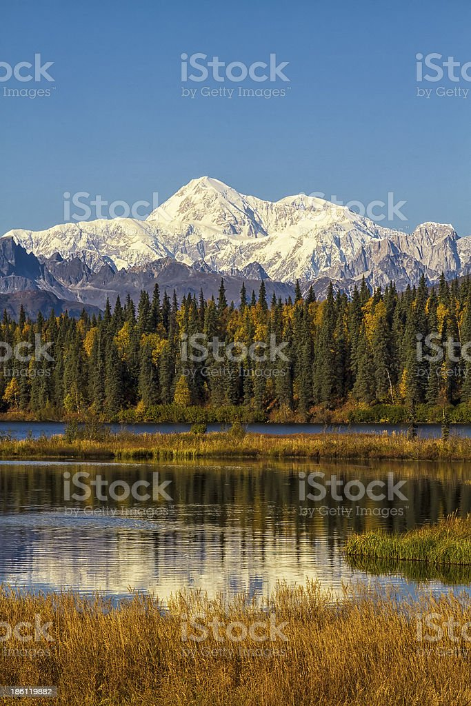 Lake edge with Mount McKinley in backdrop during Fall stock photo