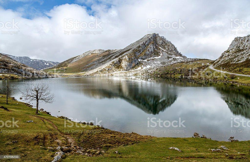 lake Enol Covadfonga, Spain stock photo