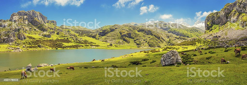 lake ercina covadonga panorama stock photo