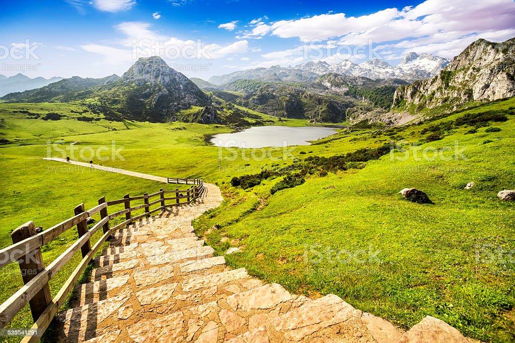 Lake Ercina,lakes of Covadonga,Asturias,Spain. stock photo