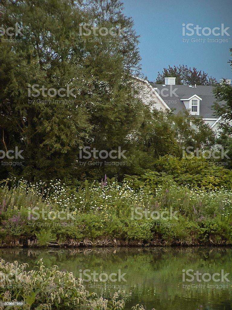 Lake Erie stock photo