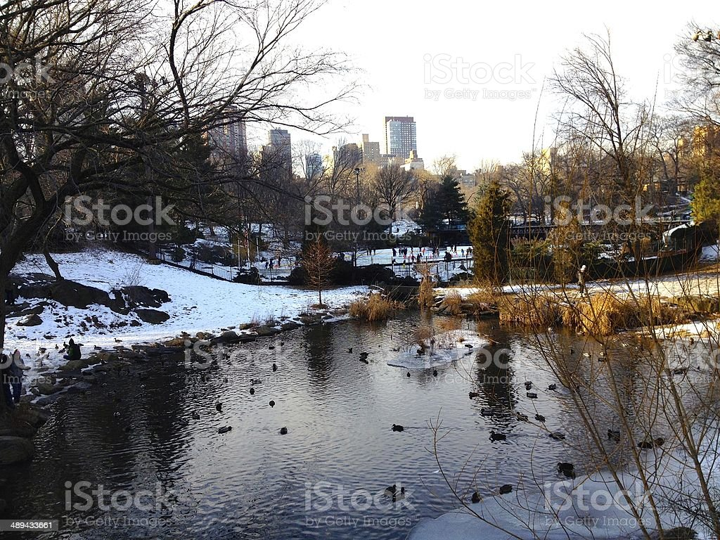 Lake front view of Manhattan royalty-free stock photo