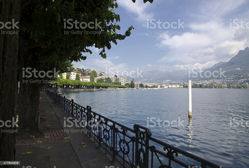 Lake front with trees royalty-free stock photo