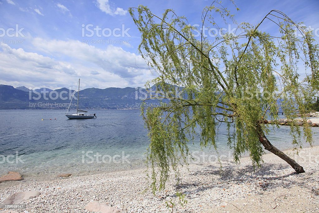 Lake Garda beach, tree and yatch, Malcesine - Italy stock photo