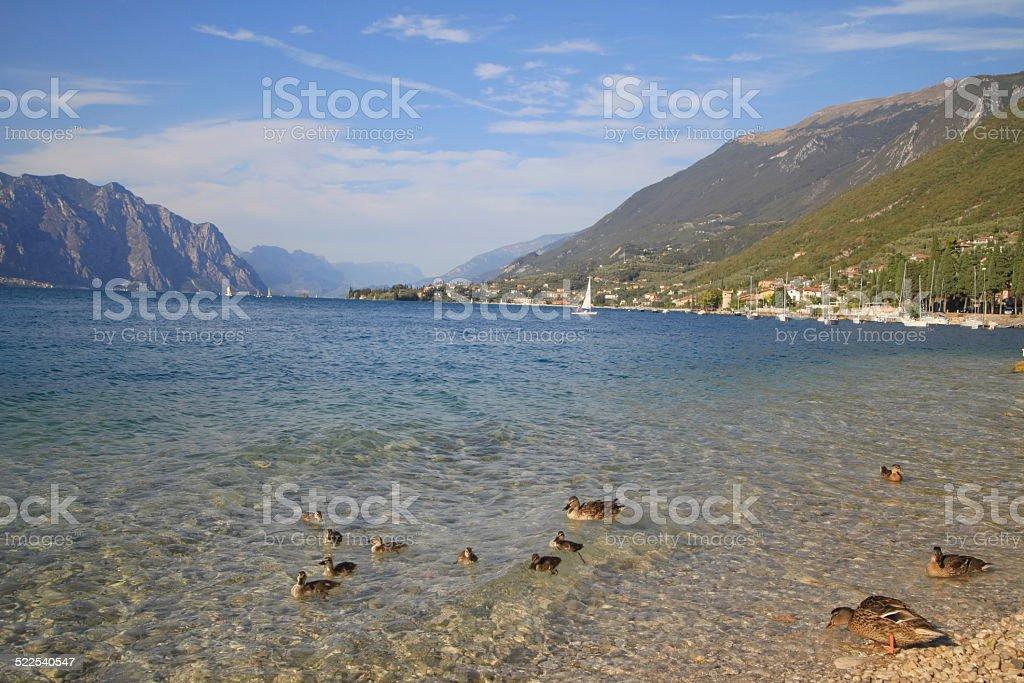 Lake Garda Italy Summer Sun stock photo