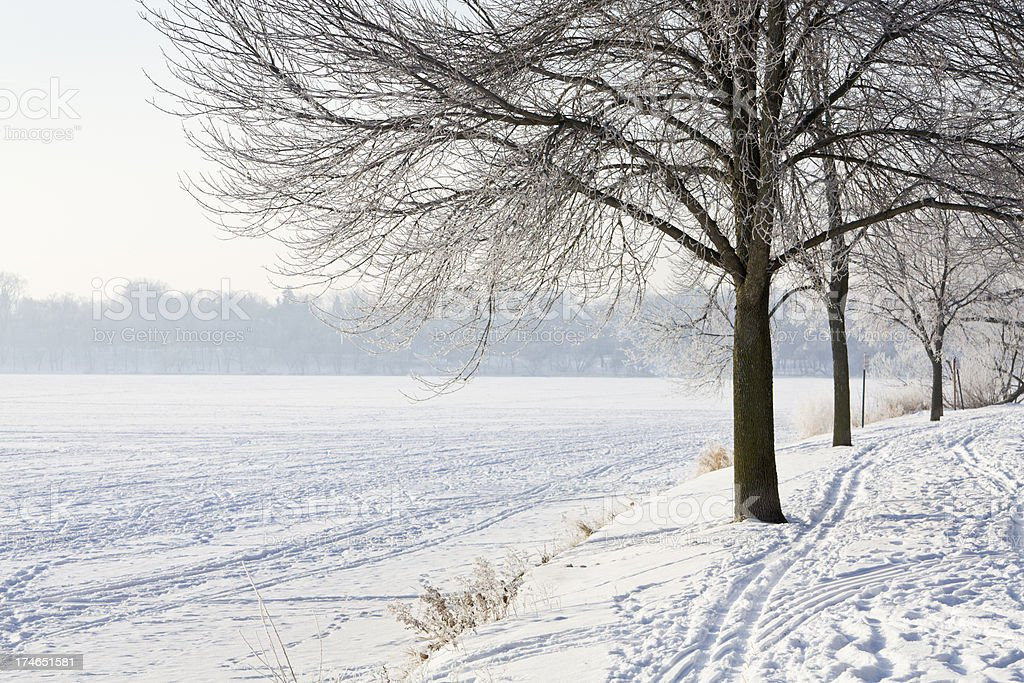 Lake Harriet Winter royalty-free stock photo