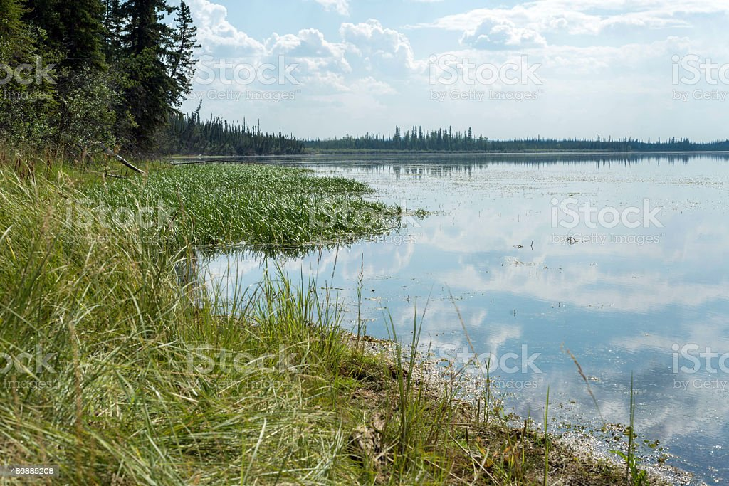 Lake in Alaska stock photo
