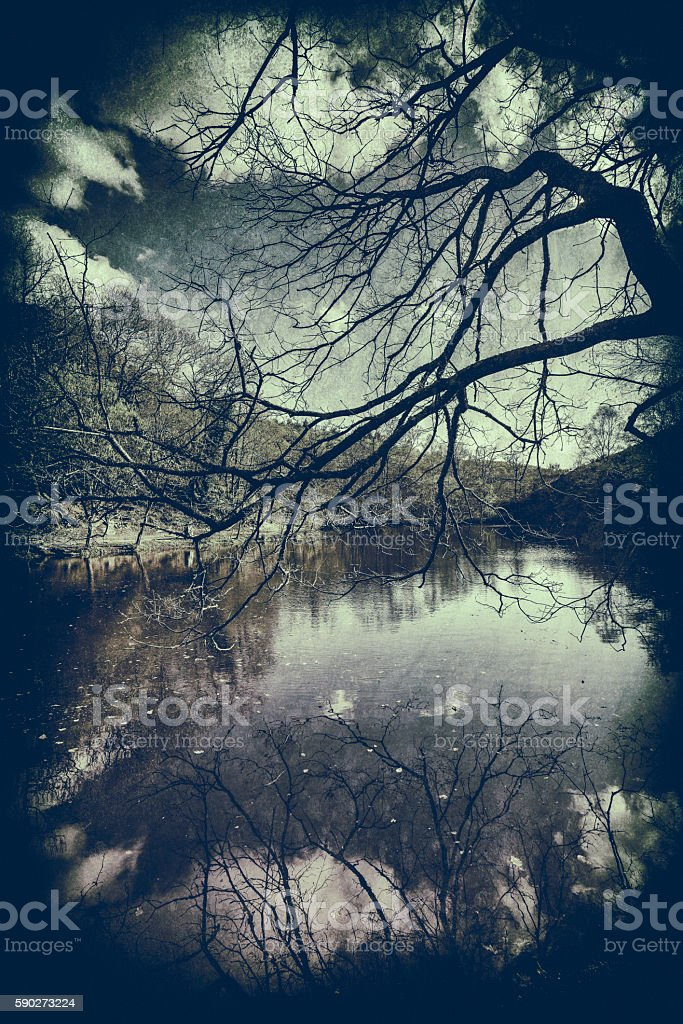Lake in Broceliande Forest acting as a mirror stock photo