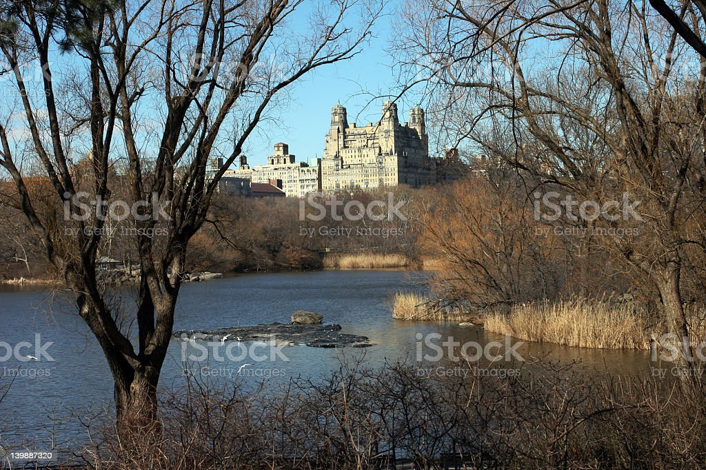Lake in Central Park royalty-free stock photo