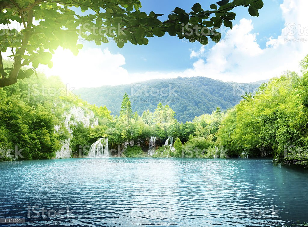 lake in deep forest stock photo