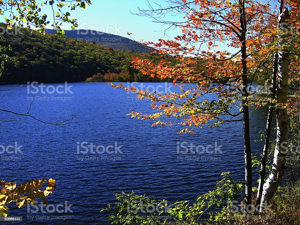 Lake in Fall royalty-free stock photo
