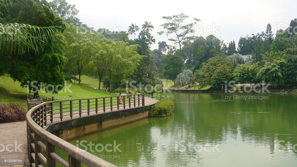 lake in garden stock photo