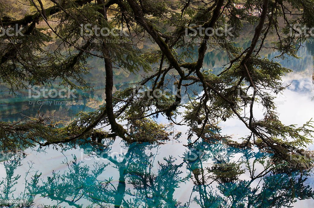 Lake in Jiuzhai, Sichuan royalty-free stock photo