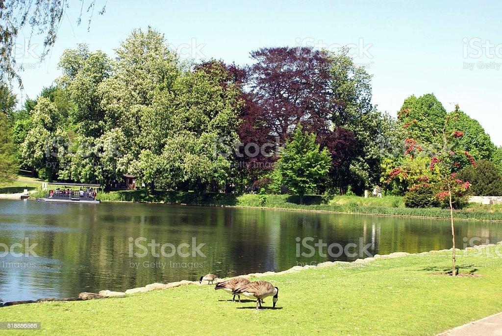Lake in Kent England stock photo