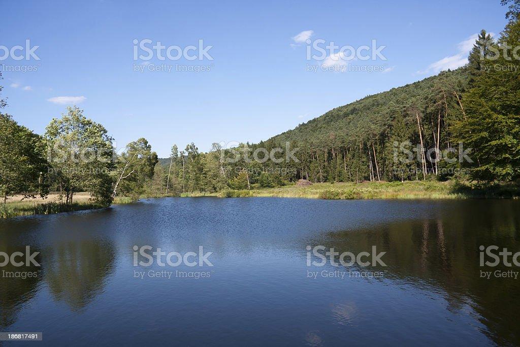 lake in PfAlzer Wald stock photo