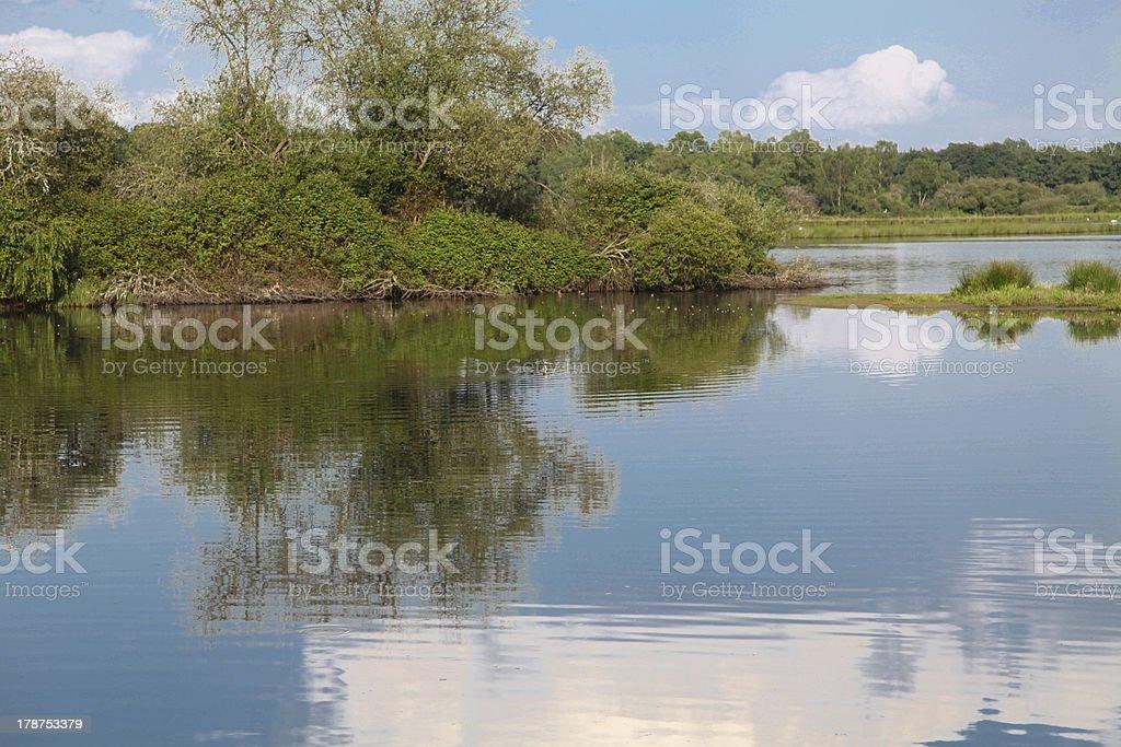 Lake in Sologne stock photo