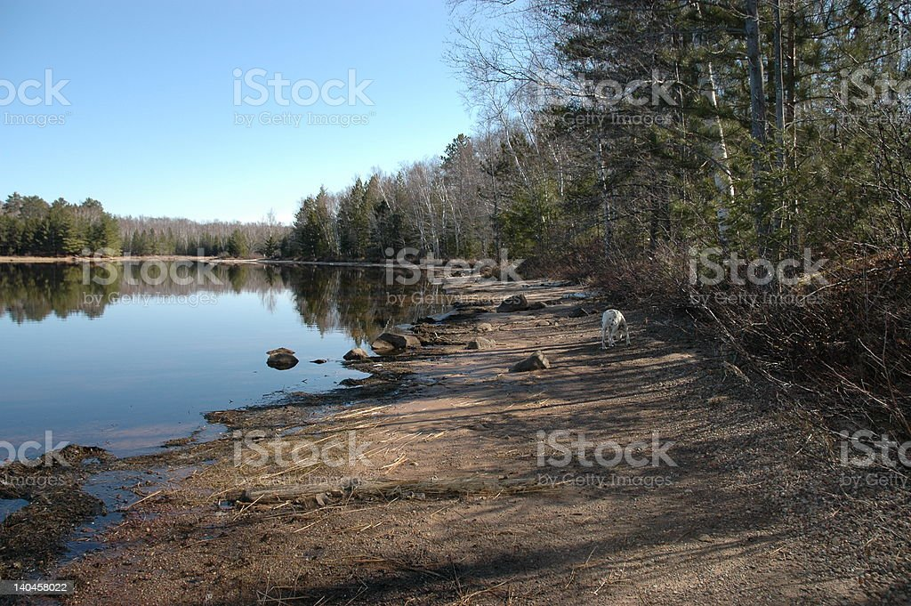 Lake in Spring royalty-free stock photo
