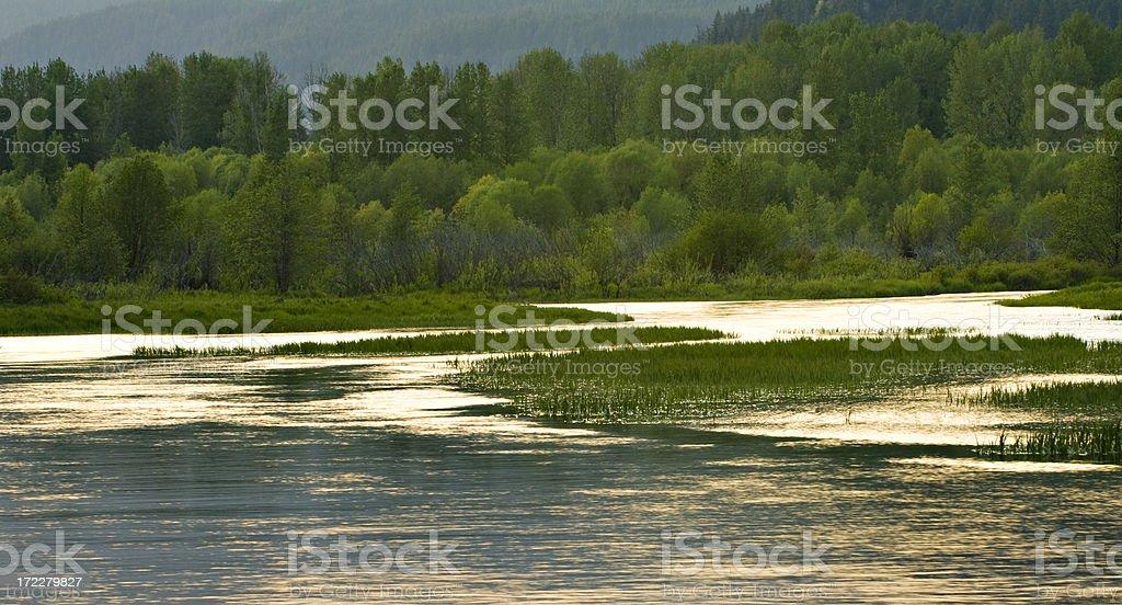 Lake in sunset light royalty-free stock photo