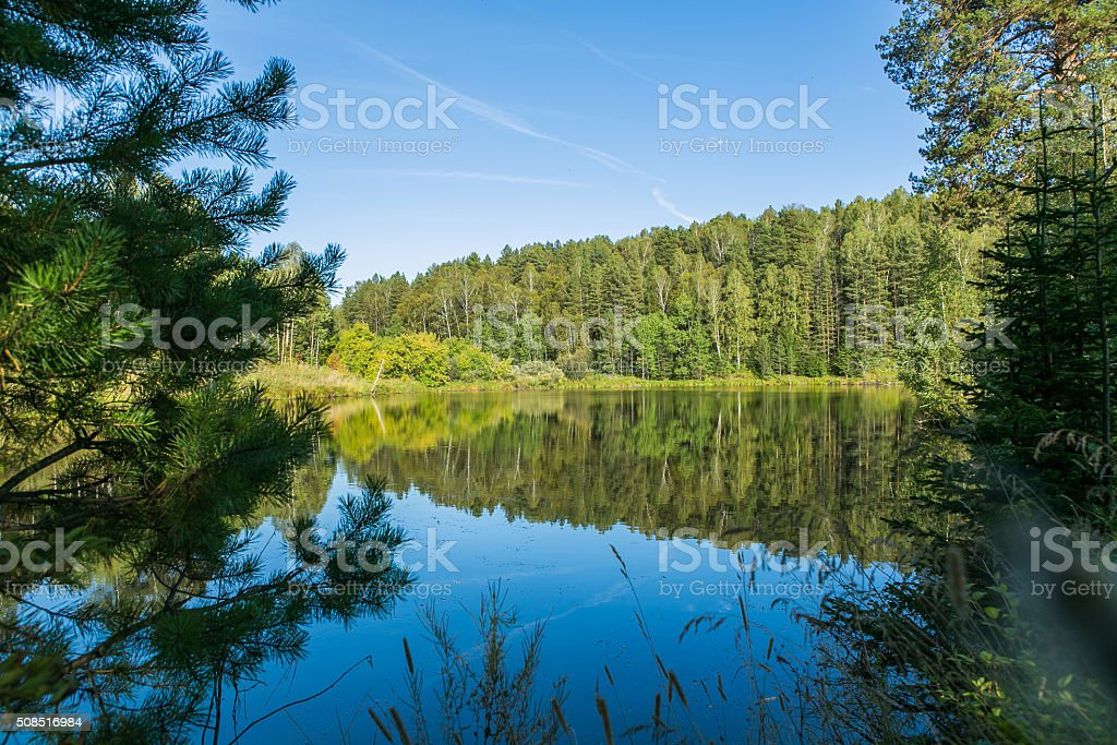 Lake in the forest stock photo