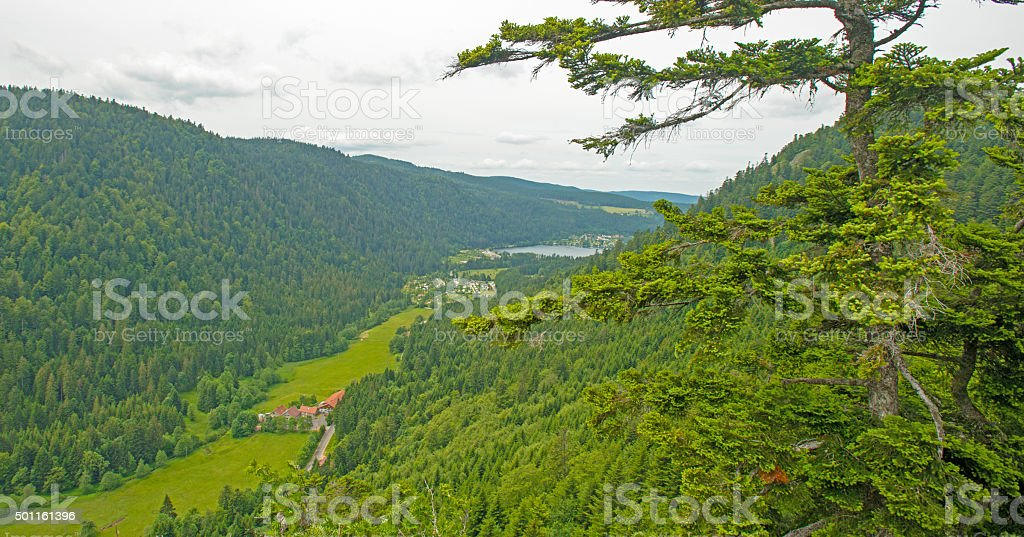 Lake in the mountains of Vosges in summer stock photo