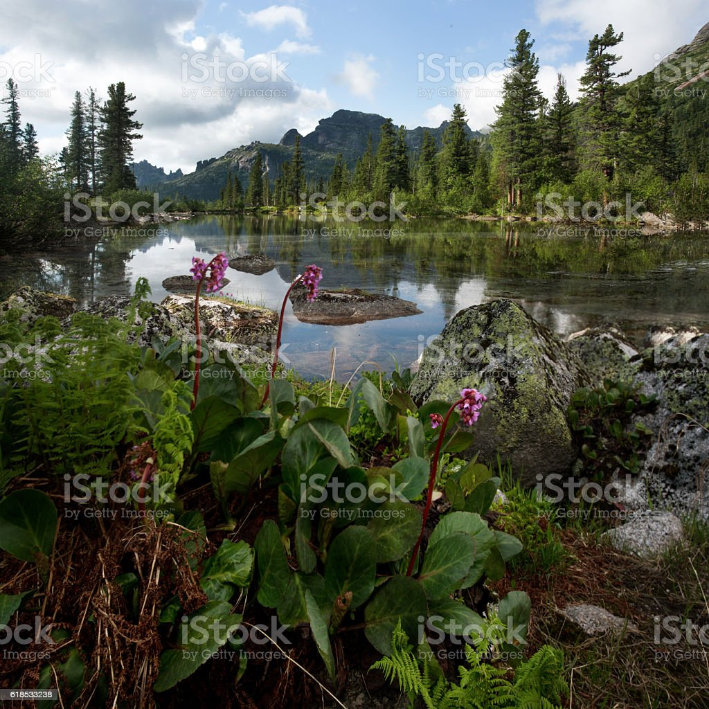 Lake in the mountains. Wildlife Siberia. Sayan stock photo