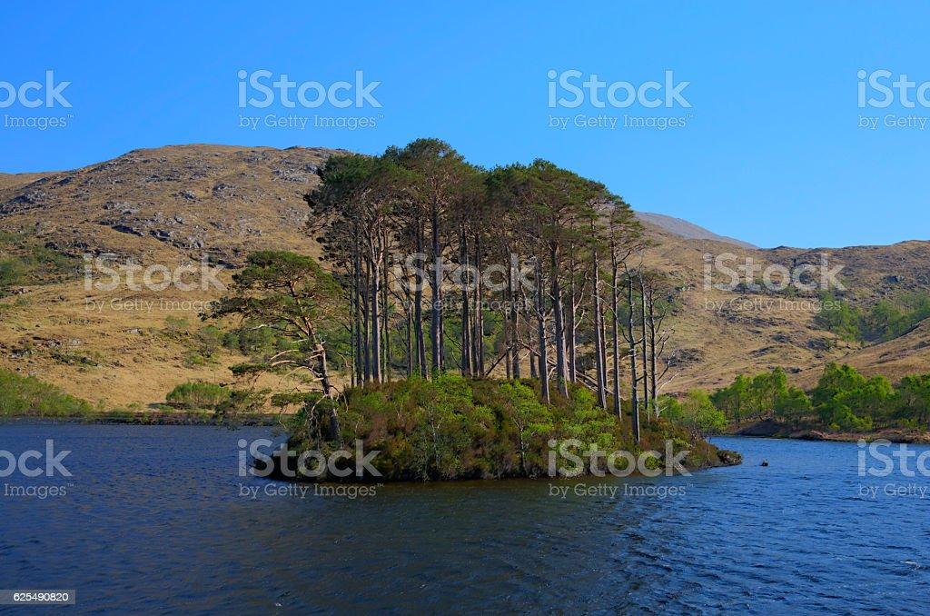 Lake island Loch Eilt Lochaber West Highlands of Scotland uk stock photo