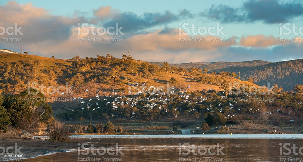 Lake Jindabyne in NSW. stock photo
