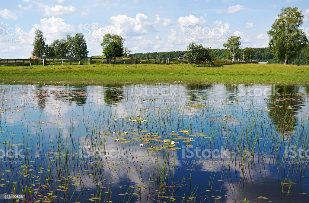 Lake Kenozero . stock photo