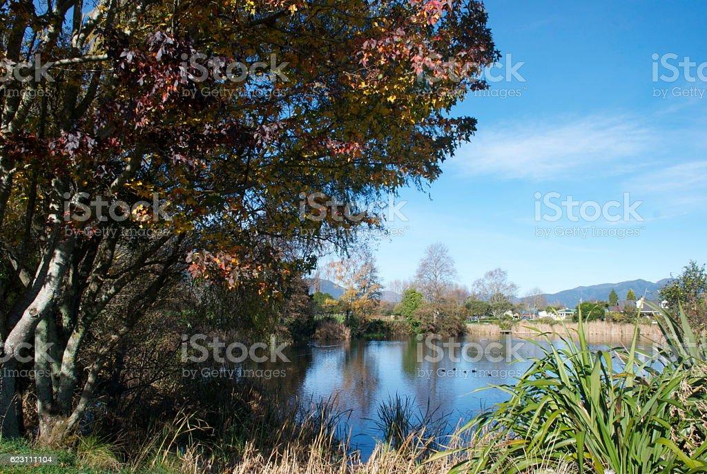 Lake Killarney Reserve, Takaka, Tasman District, New Zealand stock photo