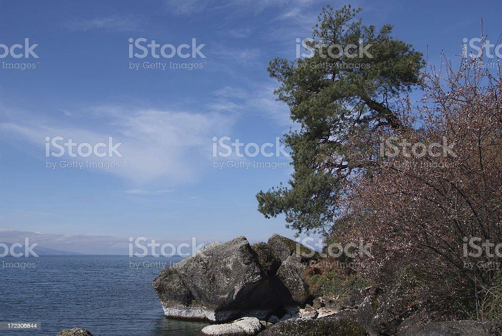 Lake Leman shore stock photo