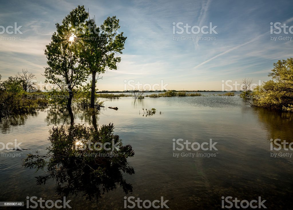 Lake Lowell reserve with trees and sun star stock photo