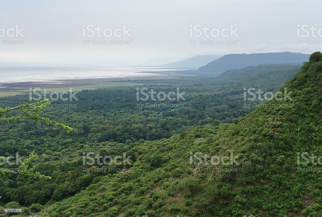 Lake Manyara National Park in Africa royalty-free stock photo