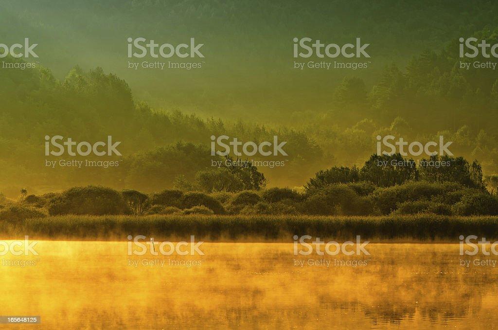 Lake Morning royalty-free stock photo