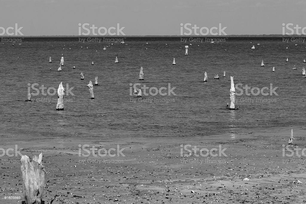 Lake Moultrie royalty-free stock photo