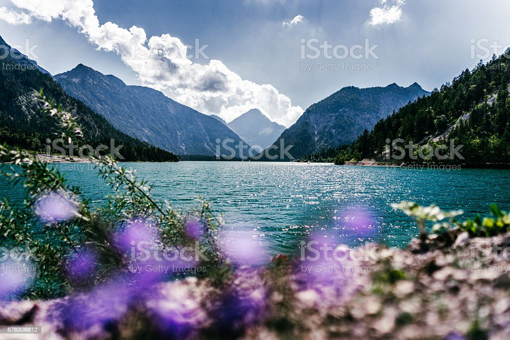 lake mountains plansee tirol stock photo