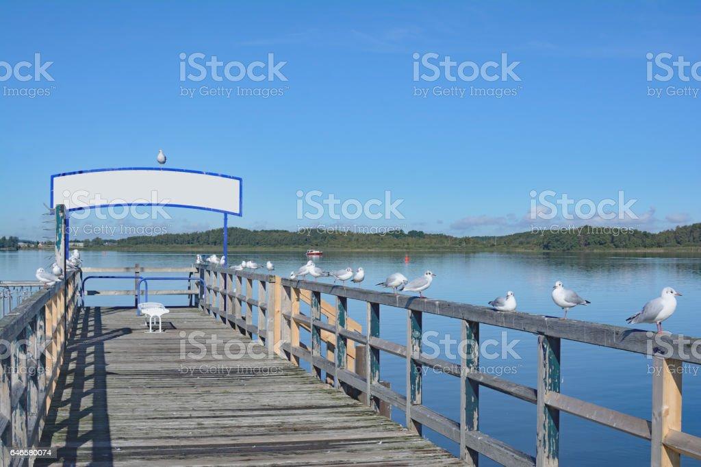 Lake Mueritz,Mueritz National Park,Germany stock photo
