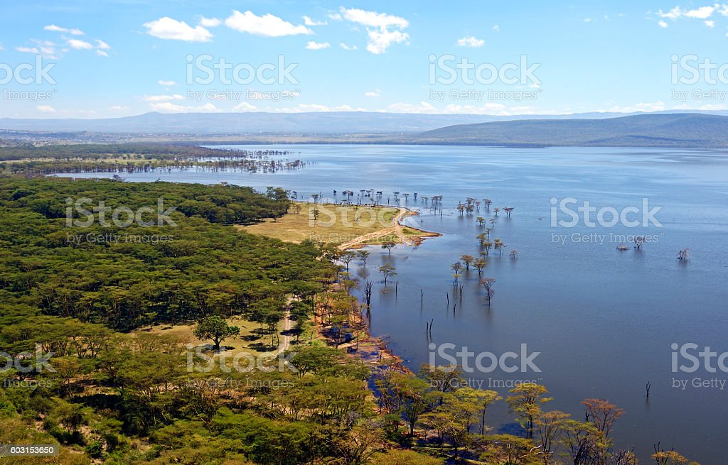 Lake Nakuru in Kenya stock photo
