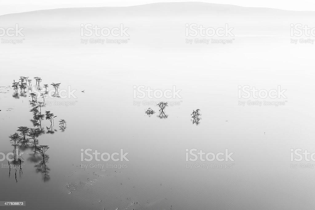 Lake Nakuru panorama royalty-free stock photo