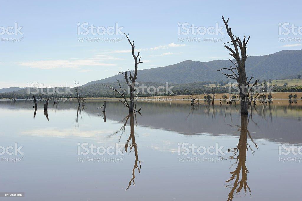 Lake Nillahcootie stock photo