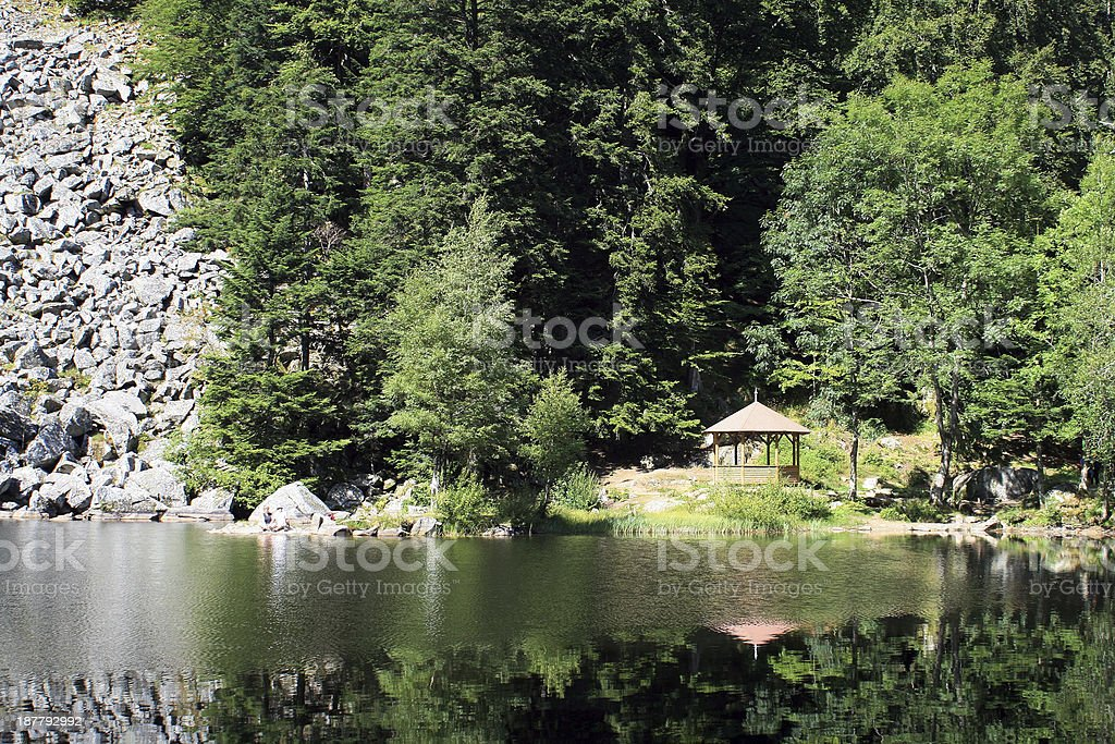 Lake of Fischboedle in Alsace stock photo
