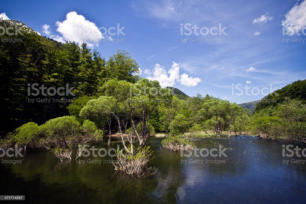 Lake of low mountain range, spring  time in Alsace stock photo