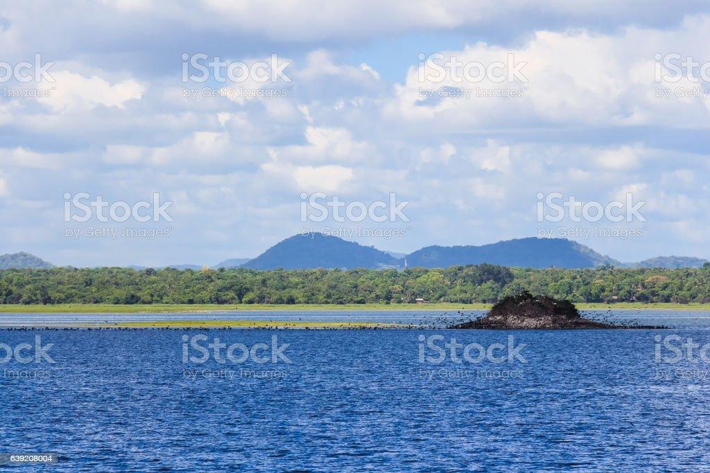 Lake of Polonnaruwa stock photo