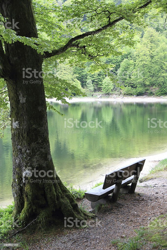 Lake of Ravens in the Vosges stock photo