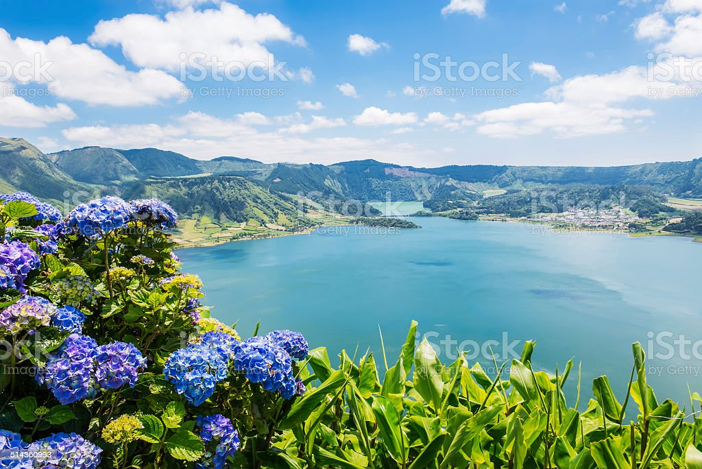Lake of Sete Cidades with hortensia's, Azores, Portugal Europe stock photo