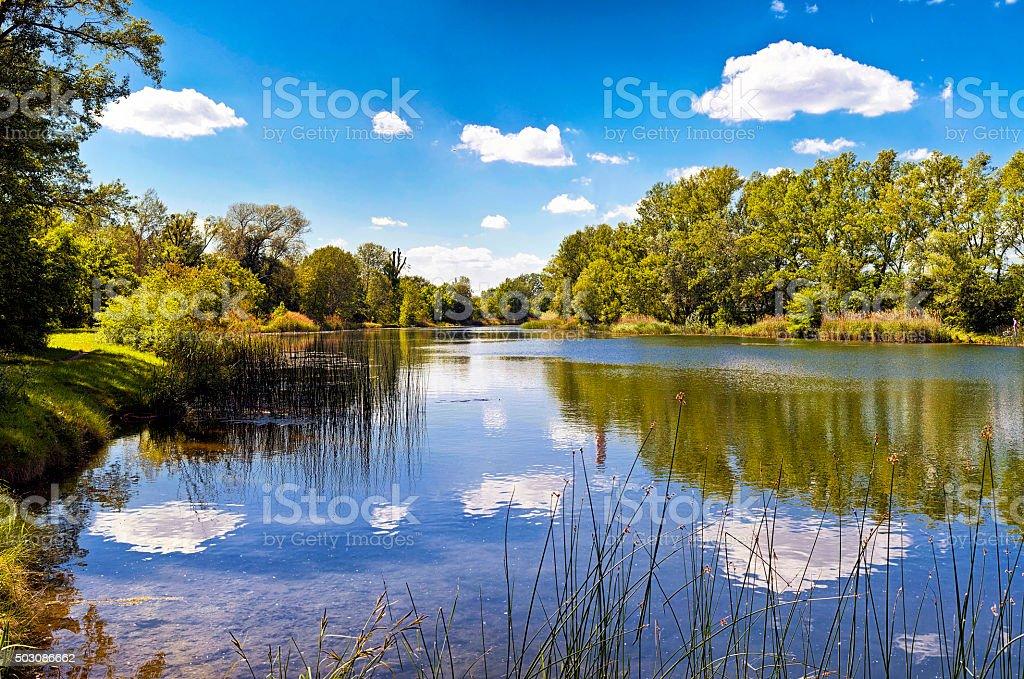 Lake of the Danube Auen National Park Vienna stock photo