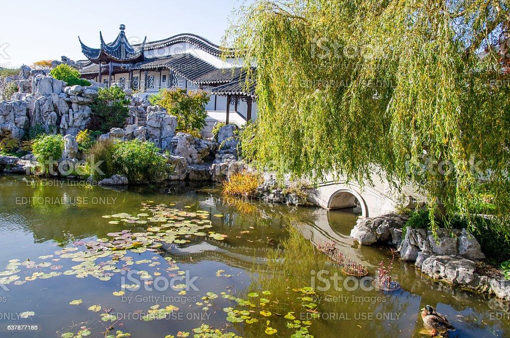 Lake of The Dunedin Chinese Garden in New Zealand. stock photo