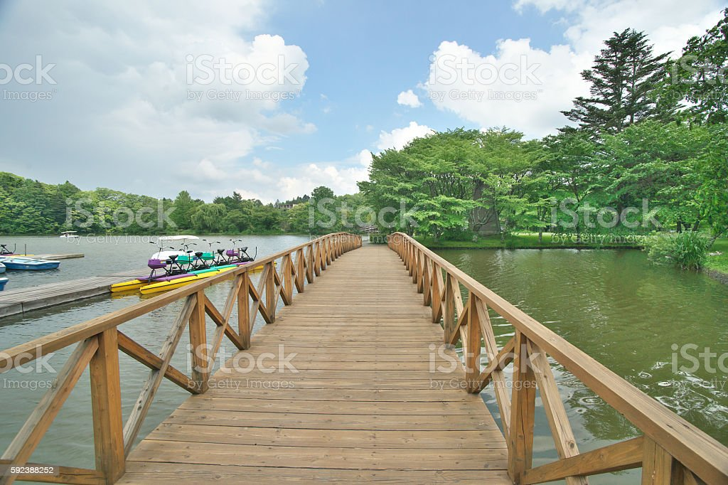 Lake of the early summer stock photo