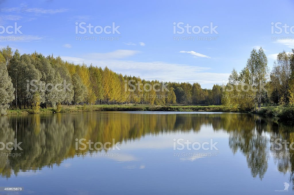 Lake of the Woods royalty-free stock photo