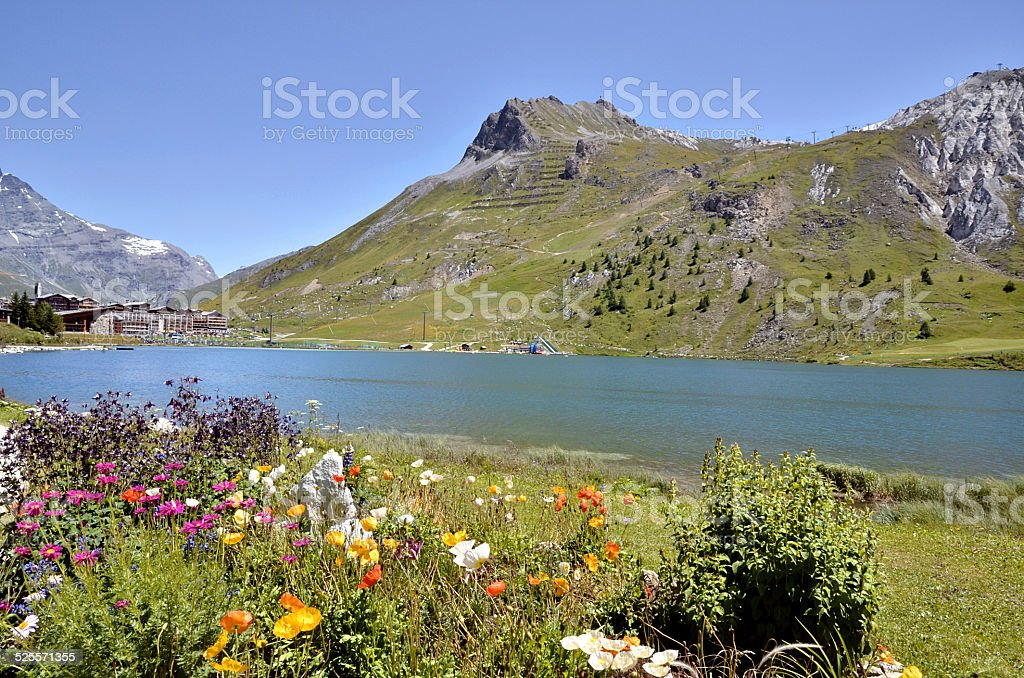 Lake of Tignes and flowers in France stock photo