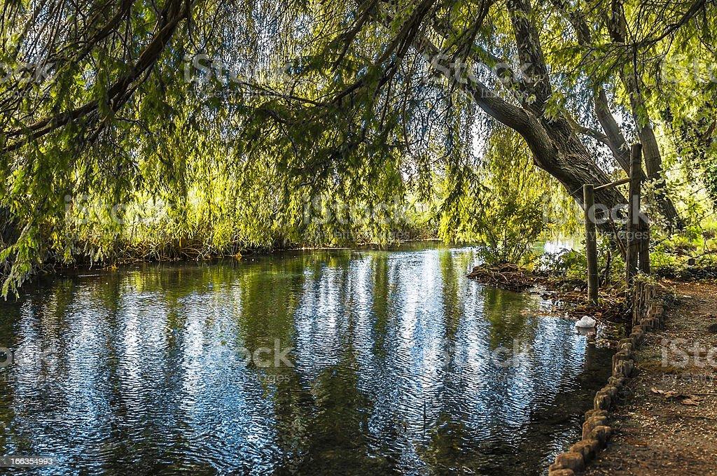Lake of Umbria. royalty-free stock photo
